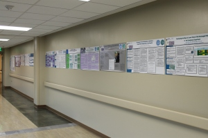 The Evidence-Based Process and Improvements Gallery